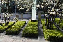 hedge garden design