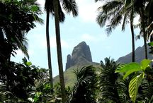 TROPICAL PARADISE / beaches, jungles, tropics
