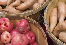 WIC Foods: Fresh Vegetables / Looking for a new way to eat veggies? Check out these recipes!