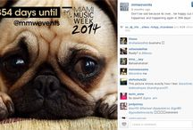 Instagram Countdowns / Here are ideas of how to countdown to an event or big launch harnessing the power of graphic design