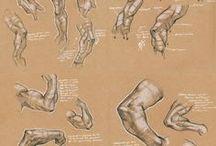braccia / disegni di braccia in diverse posture
