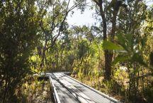 Rio Tinto Naturescape | Kings Park