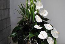 dekorácie z kvetov