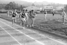 Athletics  / by Rydell High School