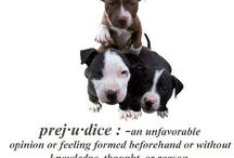 For the love of Pitties :) / by Alicia Cross