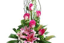 fiorii