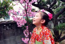 さくら と ささら  sakura & sasara / 春のさくら と 長女 ささら のコラボ