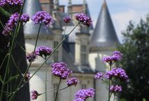 France / Travel in France