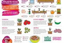 How Does Your Garden Grow? / Grow a garden and take advantage of eating healthy right from your own garden. / by THE YMCA: Peninsula Metropolitan YMCA