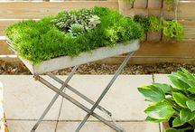 Ideetjes voor de tuin