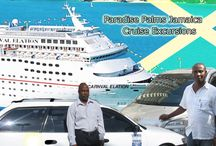 Cruise Shore Excursions Jamaica / by Paradise Palms Jamaica