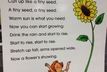 Spring/flower/insect theme in PreK!