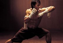martial arts / images of movements and fights