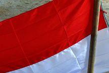Petisi Warganegara NKRI untuk Papua / Petisi Warganegara NKRI untuk Papua adalah gerakan warganegara NKRI untuk mendorong pemerintah RI memfasilitasi basudara Papua mencapai harkat dan martabat sebagai insan ciptaan Tuhan yang mengalami kesejahteraan, keadilan dan perdamaian di bumi Indonesia. Aksesitas ke Petisi Warganegara NKRI untuk Papua <http://www.facebook.com/petisi.untuk.papua>