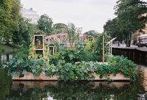 Urban & Guerilla gardening