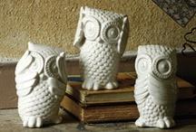 I  <3 Owls / by Kristen Bean