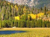 Colorado / by Ariel Blomquist