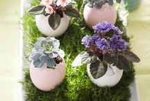 Easter flowers / by Floret Cadet