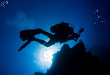 Scuba Diving / Diving, or snorkeling in Micronesia with manta rays and sharks.  Families and kids welcome.