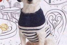 Одежка для собак