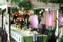 Wedding Ideas / by Jackie Davis
