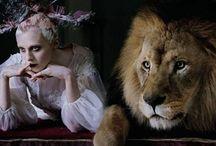 Nott / LORDOWIE NOTTINGHAMSHIRE I LEICESTERSHIRE  Quia nominor leo - Bo się nazywam lew  Korzenie: Angielskie