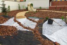 výsadby / zakládání výsadeb na zahradě