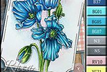 flower color inspiration