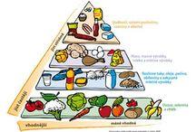 Výživa
