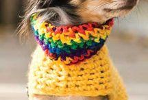 Hundemode / Mode um die Schultern zu wärmen.
