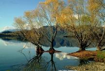 Lake Tutira