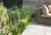 Grassentuin / Tuinen met grassen.