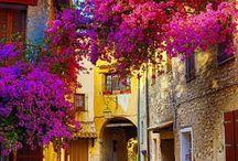 Nice Franța