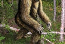 Bigfoot I Believe / by Amanda LaRue-Warren