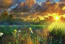 Landscape & Nature (Fine Art America)