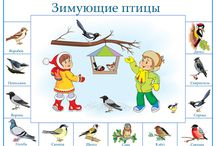 vtáčiky v zime
