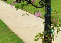 Flowering mailboxes / by LAWN-N-ORDER