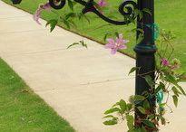 Flowering mailboxes