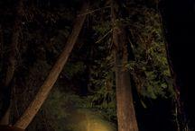 Camping / by Nanette Hallman