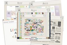 Anita Designs