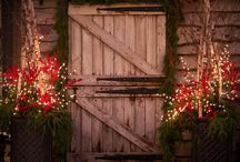 holidays / by Jennifer Musumeci