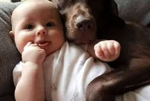 a baby and a dog