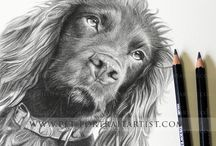 Pencil Pet Portraits Detail Photos / Here are some close up's of my pencil portraits on the plan chest with my pencils on them to show scale.