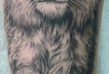 Lvíčci
