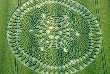Enigmáticas geometrías en las cosechas....
