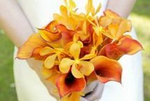 Flower ideas / by Amanda Turnbull