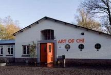 ART OF CHI