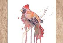 Birds / by Joyce McPherson