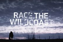 Race the Wildcoast