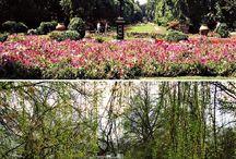 Bucharest Parks